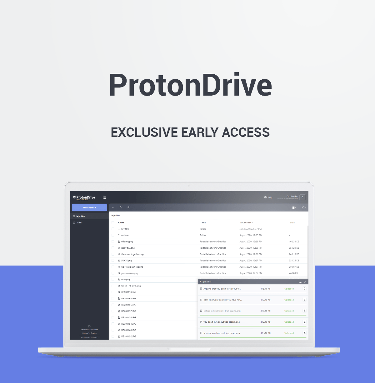 ProtonDrive Access