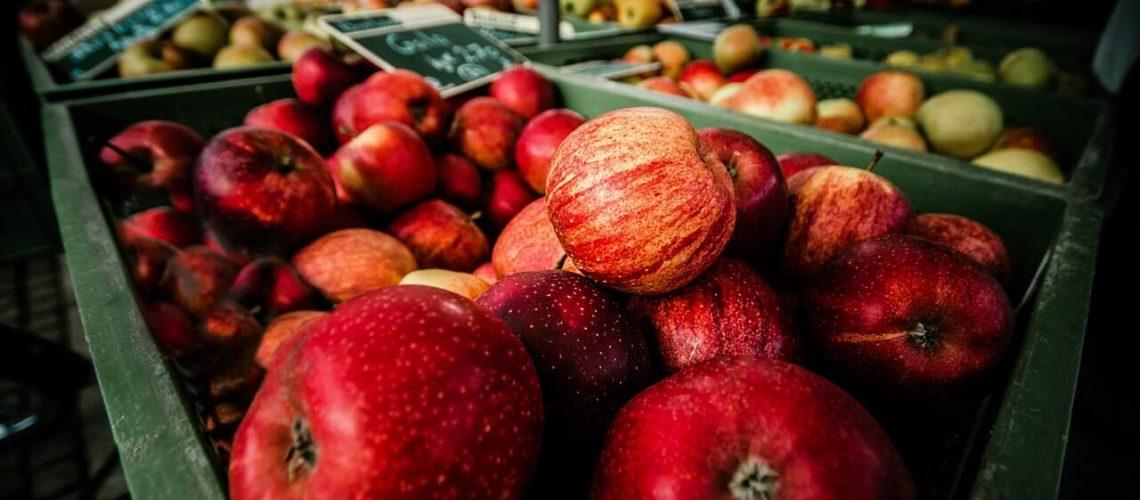 abundance-apples-blur-close-up-349730(1)