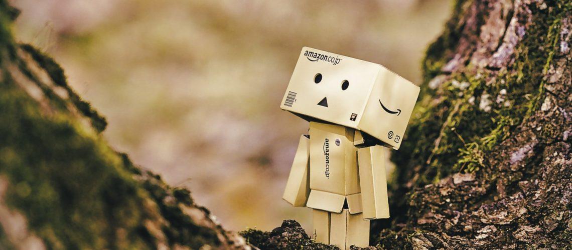 Amazon Box Guy